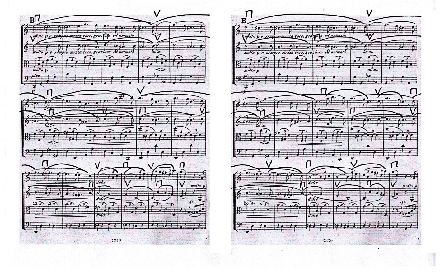 Figure 12: Johannes Brahms: String Quartet op. 51 no. 2, first movement, bars 46–61. First Edition (1873), with bowings added.