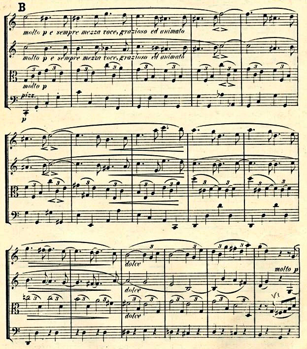 Figure 9: Johannes Brahms: String Quartet op. 51 no. 2, first movement, bars 46–61. First Edition (1873).